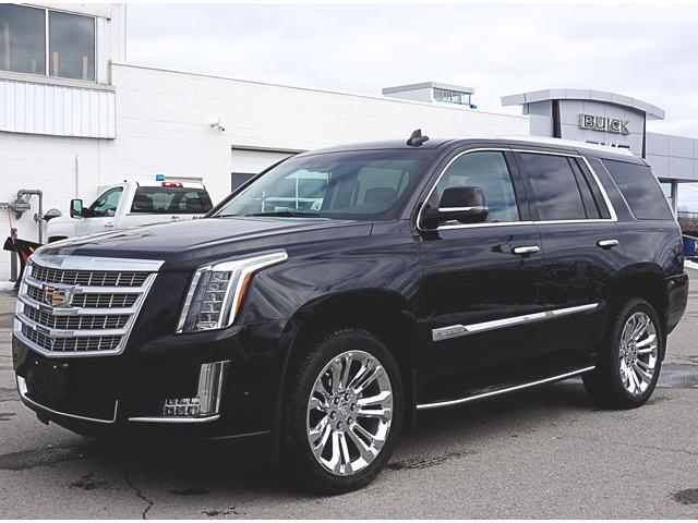 2017 Cadillac Escalade Luxury (Stk: 17686) in Peterborough - Image 2 of 21
