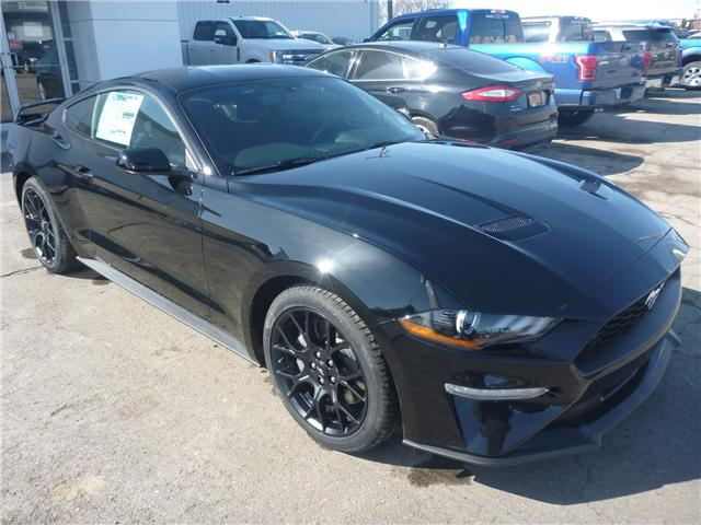2018 Ford Mustang EcoBoost (Stk: 8141) in Wilkie - Image 2 of 20