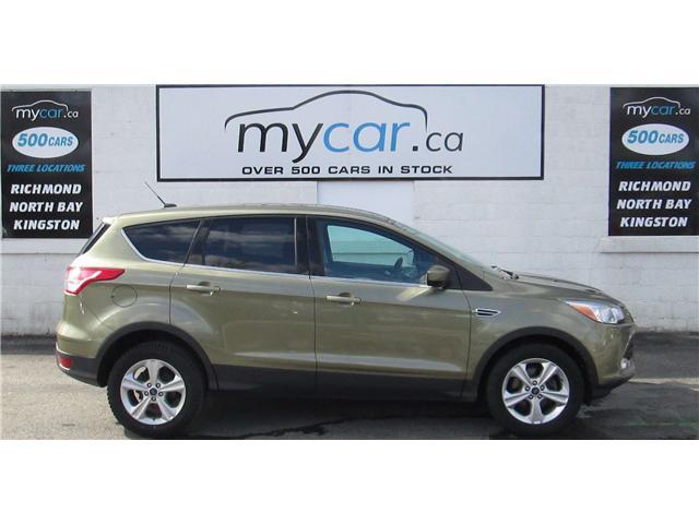 2014 Ford Escape SE (Stk: 180105) in Richmond - Image 1 of 13