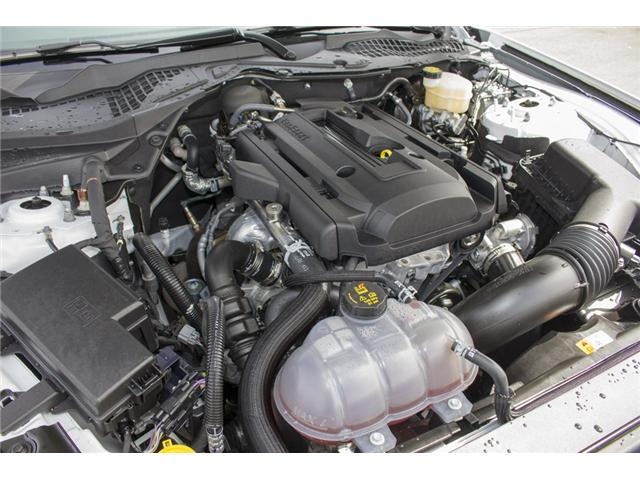 2017 Ford Mustang EcoBoost (Stk: P41383) in Surrey - Image 11 of 28