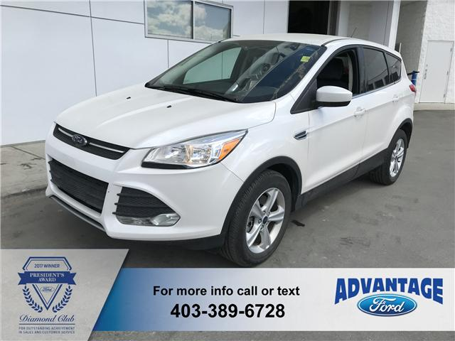 2014 Ford Escape SE (Stk: T22412) in Calgary - Image 2 of 11
