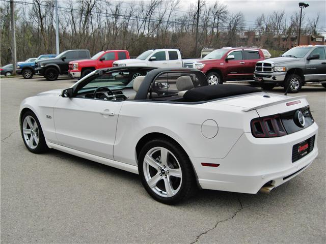 2013 Ford Mustang GT (Stk: 1335) in Orangeville - Image 7 of 21