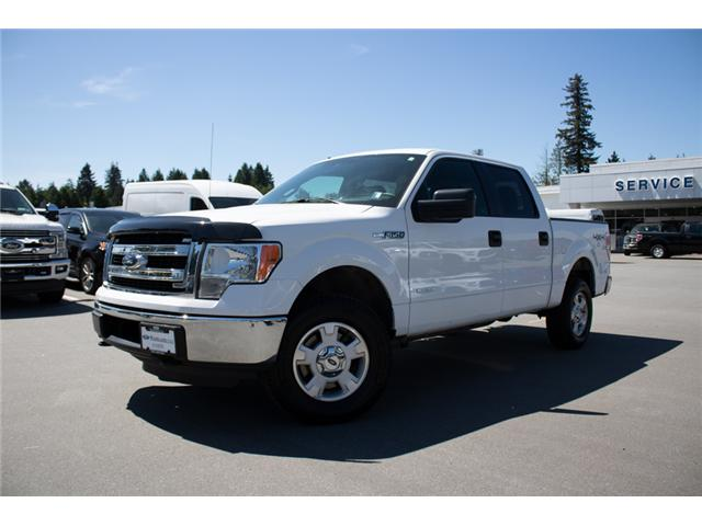 2013 Ford F-150 XLT (Stk: 8F15971A) in Surrey - Image 3 of 24