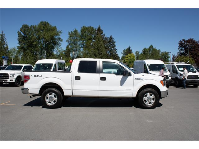 2013 Ford F-150 XLT (Stk: 8F15971A) in Surrey - Image 9 of 24