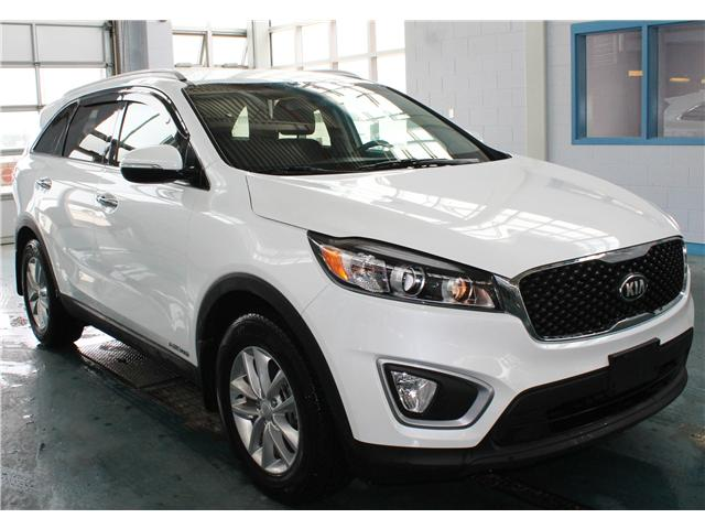 2017 Kia Sorento 3.3L LX V6 7-Seater (Stk: BB318094) in Regina - Image 2 of 15