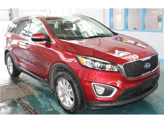 2017 Kia Sorento 2.0L LX Turbo (Stk: BB211202) in Regina - Image 2 of 15