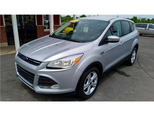 2014 Ford Escape SE (Stk: ) in Dunnville - Image 1 of 18