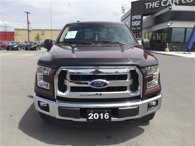 2016 Ford F-150 XL (Stk: 18264) in Sudbury - Image 2 of 13