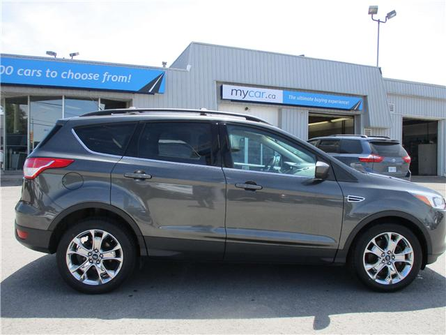 2015 Ford Escape SE (Stk: 180166) in Kingston - Image 1 of 13