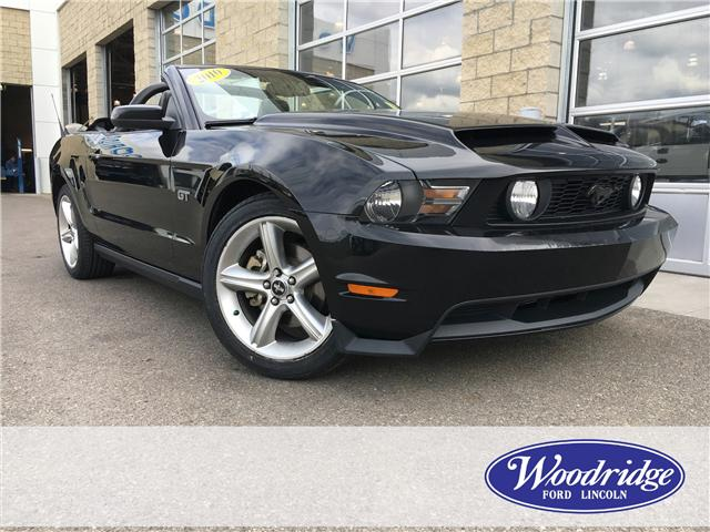 2010 Ford Mustang GT (Stk: 16965) in Calgary - Image 2 of 18