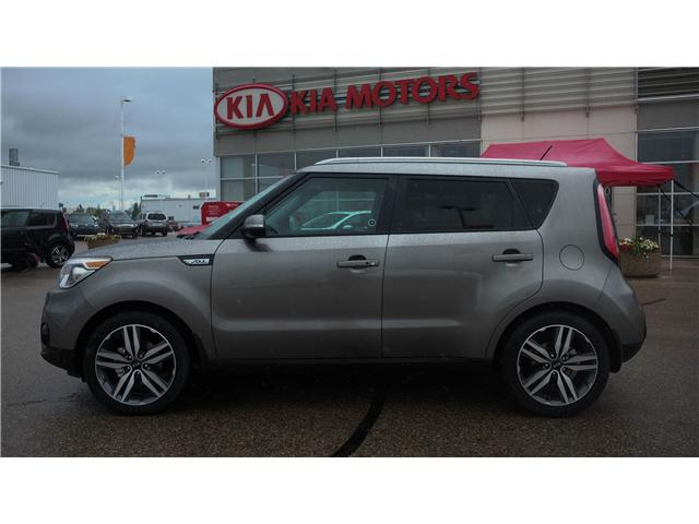 2019 kia soul ex premium android apple car play 5 year warranty roadside backup camera. Black Bedroom Furniture Sets. Home Design Ideas