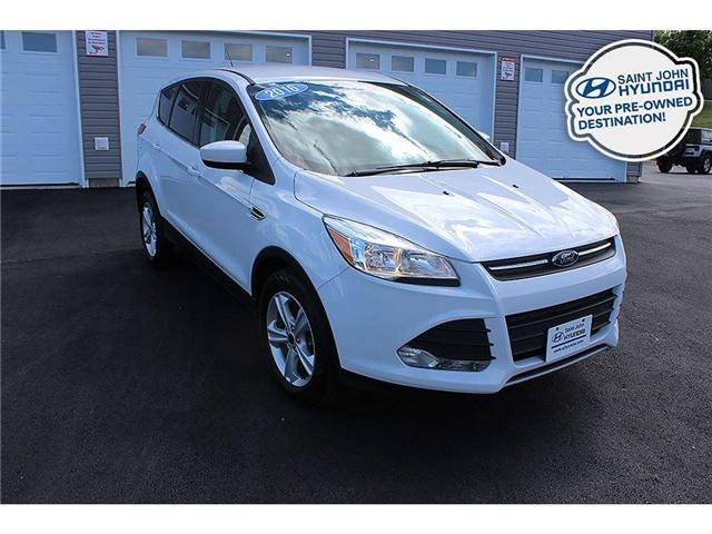 2016 Ford Escape SE (Stk: U1732) in Saint John - Image 1 of 21