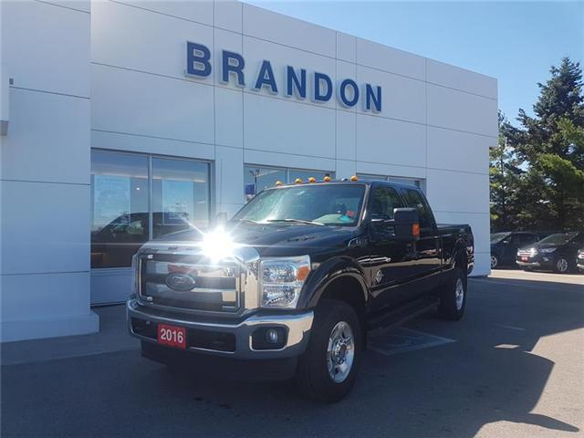 2016 Ford F-250  (Stk: IF38420A) in Uxbridge - Image 1 of 10