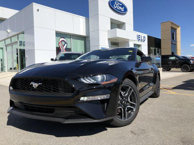 2019 Ford Mustang EcoBoost Premium (Stk: MS19013) in Barrie - Image 1 of 30