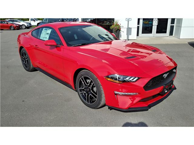 2019 Ford Mustang EcoBoost (Stk: M1048) in Bobcaygeon - Image 2 of 20