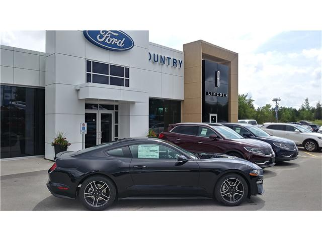 2019 Ford Mustang EcoBoost (Stk: M1049) in Bobcaygeon - Image 1 of 20