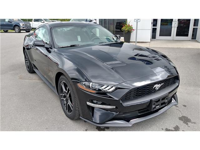 2019 Ford Mustang EcoBoost (Stk: M1049) in Bobcaygeon - Image 2 of 20