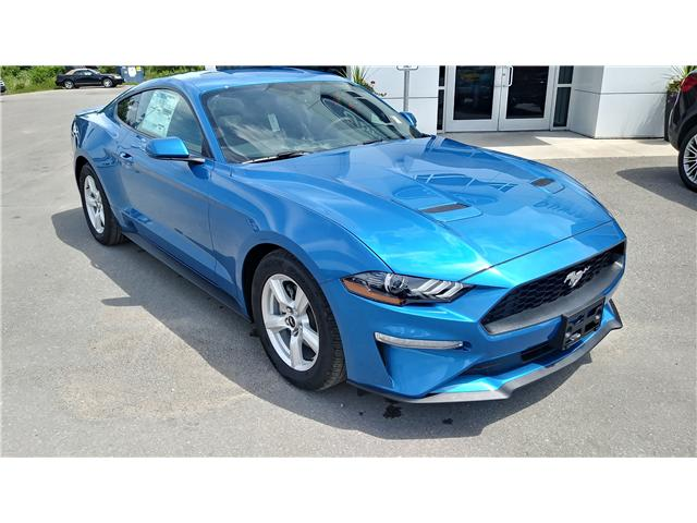 2019 Ford Mustang EcoBoost (Stk: M1059) in Bobcaygeon - Image 2 of 20