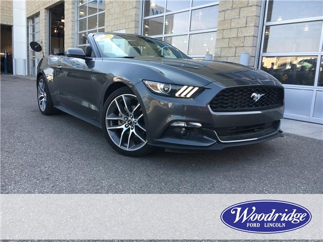 2017 Ford Mustang EcoBoost Premium (Stk: 17006) in Calgary - Image 1 of 20