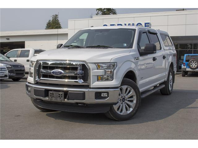 2015 Ford F-150 XLT (Stk: 8F16360A) in Surrey - Image 3 of 24
