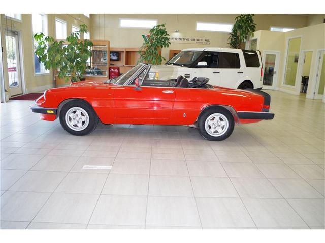 1984 Alfa Romeo Spider 2.0L FUEL INJECTED (Stk: 9843) in Edmonton - Image 2 of 12