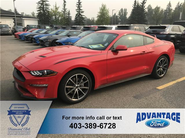 2019 Ford Mustang EcoBoost (Stk: K-054) in Calgary - Image 1 of 5