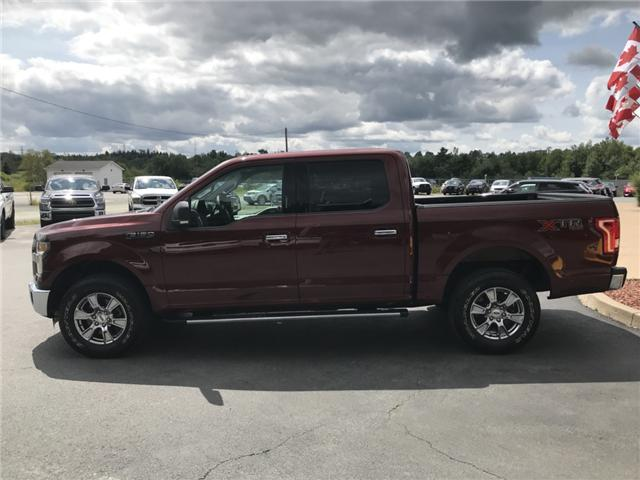 2015 Ford F-150  (Stk: 10050) in Lower Sackville - Image 2 of 20