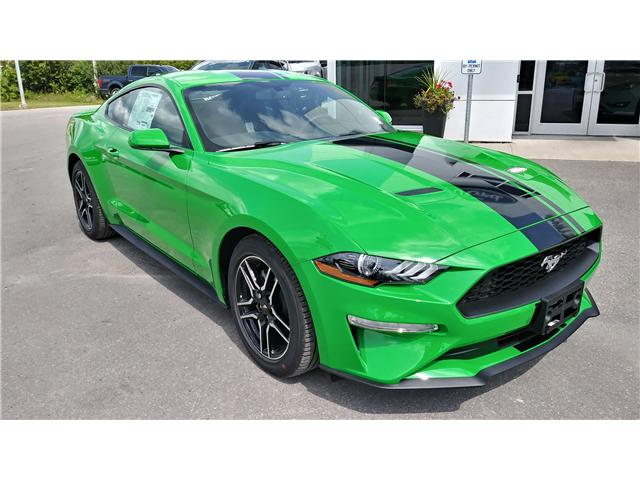 2019 Ford Mustang EcoBoost (Stk: M1064) in Bobcaygeon - Image 2 of 18