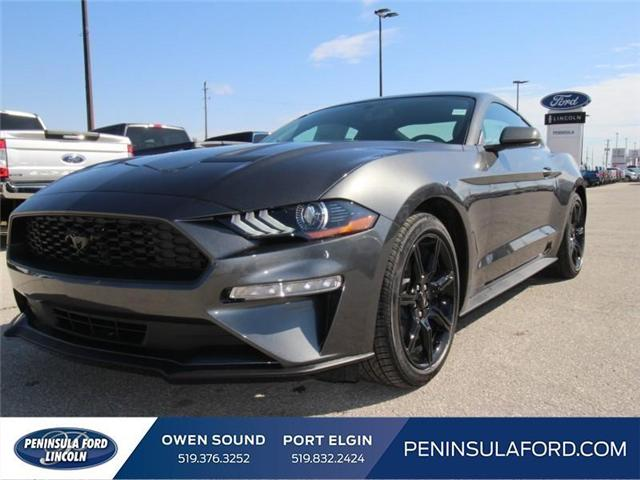 2018 Ford Mustang EcoBoost (Stk: 18MU09) in Owen Sound - Image 1 of 16