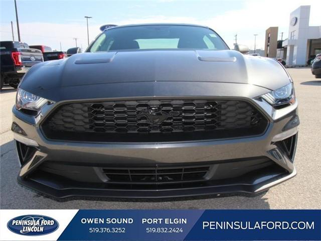 2018 Ford Mustang EcoBoost (Stk: 18MU09) in Owen Sound - Image 2 of 16