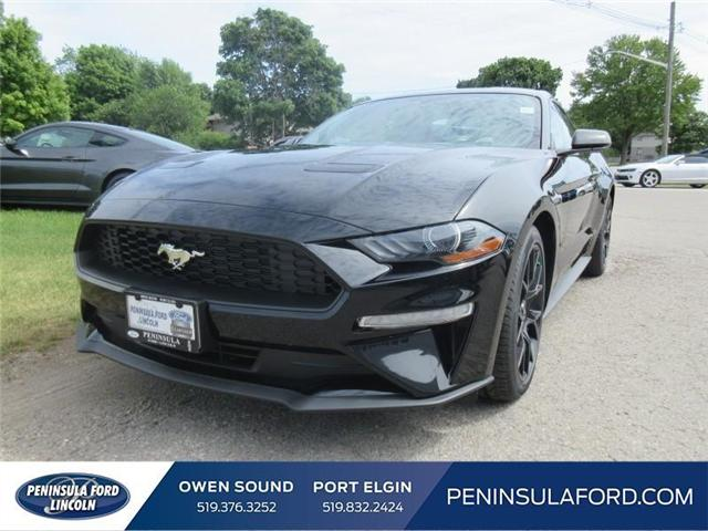 2018 Ford Mustang EcoBoost (Stk: 18MU15) in Owen Sound - Image 1 of 16