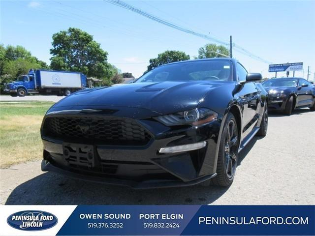 2018 Ford Mustang EcoBoost (Stk: 18MU14) in Owen Sound - Image 1 of 16