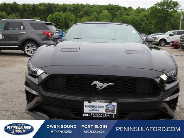 2018 Ford Mustang EcoBoost (Stk: 18MU17) in Owen Sound - Image 2 of 13