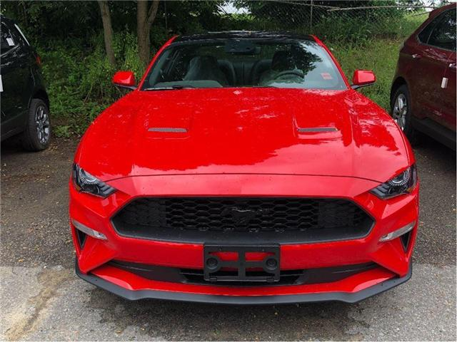 2019 Ford Mustang EcoBoost Premium (Stk: IMU8414) in Uxbridge - Image 2 of 5