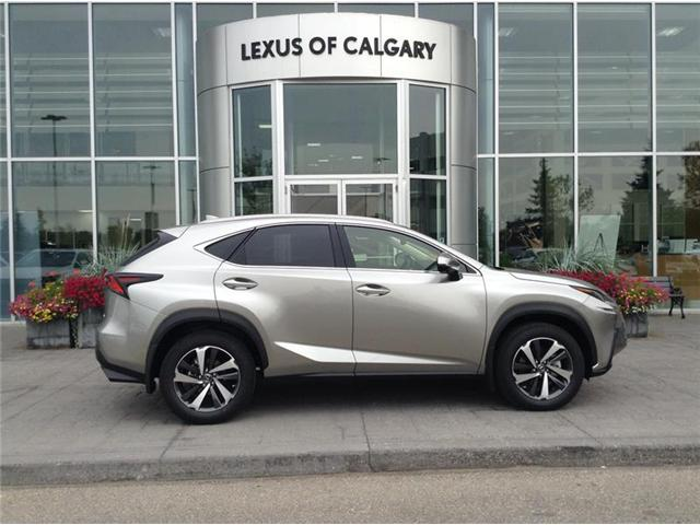 2019 Lexus NX 300 Base (Stk: 190039) in Calgary - Image 1 of 11