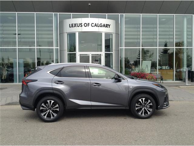 2019 Lexus NX 300 Base (Stk: 190048) in Calgary - Image 1 of 11