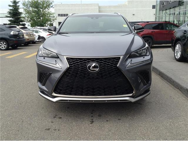 2019 Lexus NX 300 Base (Stk: 190048) in Calgary - Image 2 of 11