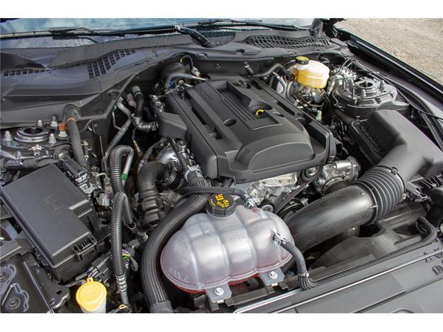 2019 Ford Mustang EcoBoost Premium (Stk: 9MU3126) in Surrey - Image 10 of 23