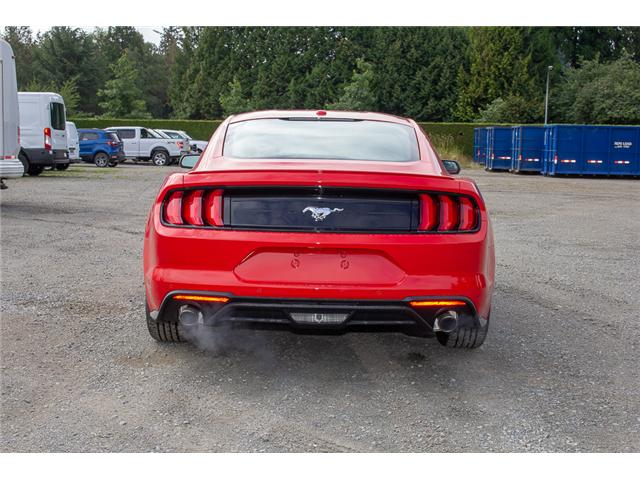 2019 Ford Mustang EcoBoost Premium (Stk: 9MU3129) in Surrey - Image 6 of 21
