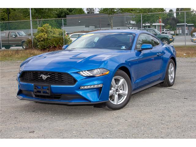 2019 Ford Mustang EcoBoost (Stk: 9MU5160) in Surrey - Image 3 of 21