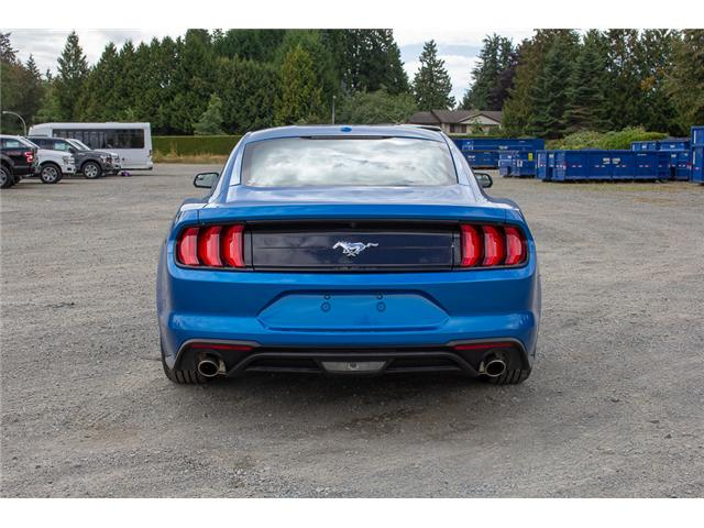 2019 Ford Mustang EcoBoost (Stk: 9MU5160) in Surrey - Image 6 of 21