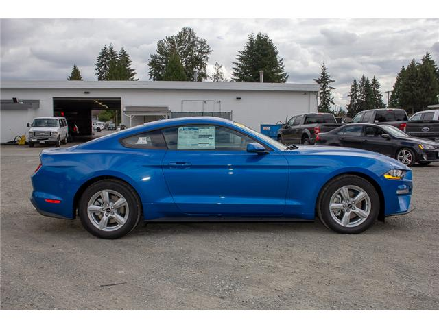 2019 Ford Mustang EcoBoost (Stk: 9MU5160) in Surrey - Image 8 of 21