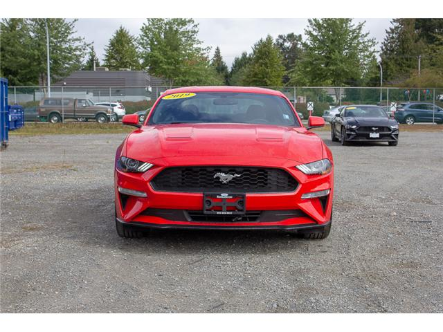 2019 Ford Mustang EcoBoost (Stk: 9MU5162) in Surrey - Image 2 of 22