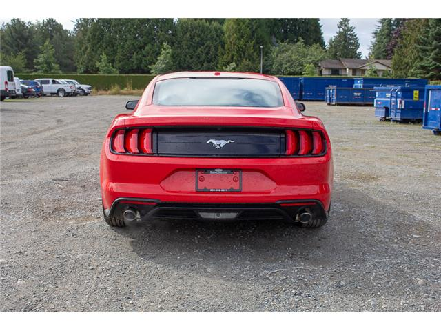 2019 Ford Mustang  (Stk: 9MU5162) in Surrey - Image 6 of 22