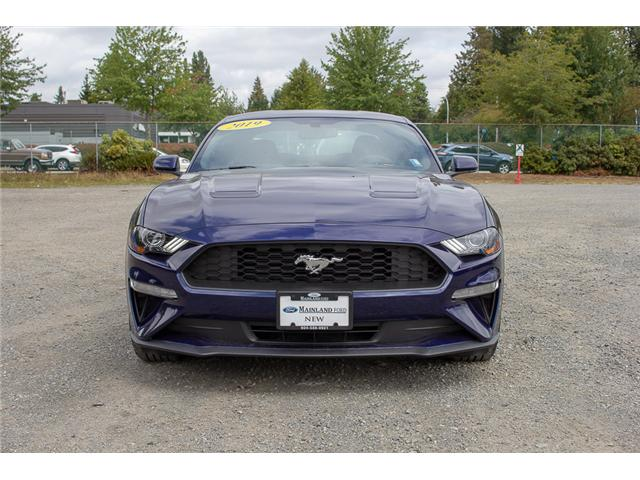2019 Ford Mustang  (Stk: 9MU5167) in Surrey - Image 2 of 21