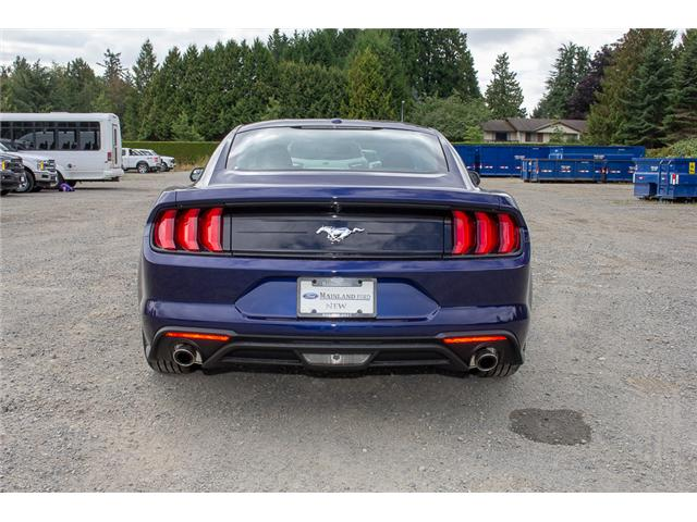 2019 Ford Mustang  (Stk: 9MU5167) in Surrey - Image 6 of 21
