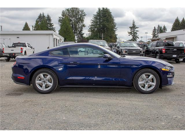 2019 Ford Mustang  (Stk: 9MU5167) in Surrey - Image 8 of 21