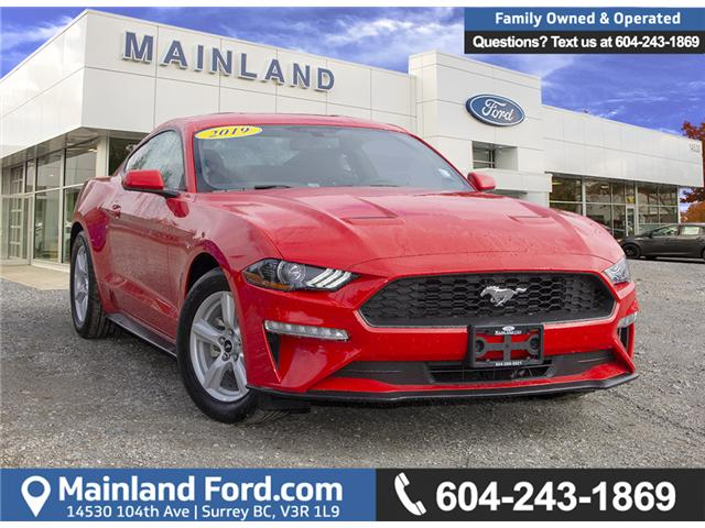 2019 Ford Mustang EcoBoost (Stk: 9MU5162) in Surrey - Image 1 of 22