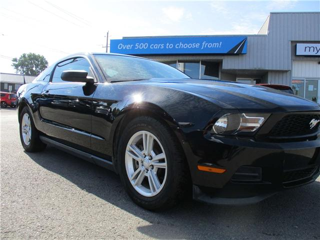 2011 Ford Mustang Value Leader (Stk: 181086) in Kingston - Image 1 of 11