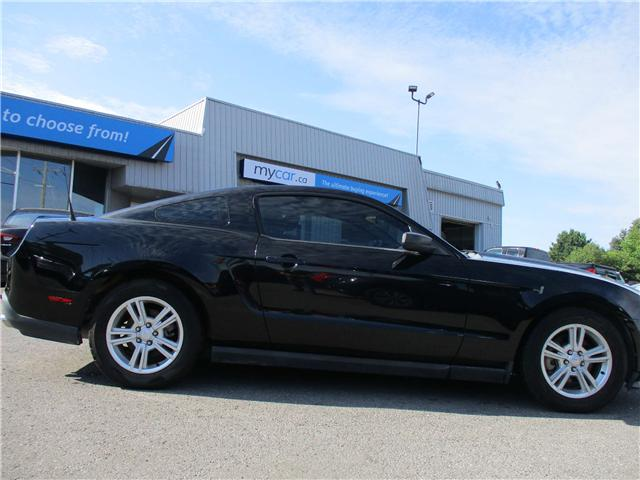 2011 Ford Mustang Value Leader (Stk: 181086) in Kingston - Image 2 of 11
